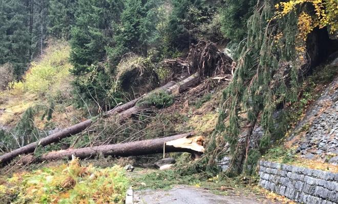 Maltempo: il Parco Naturale Adamello Brenta dà conto dei danni e raccoglie informazioni