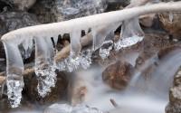 5 forme di ghiaccio - Giorgio Berasi - image
